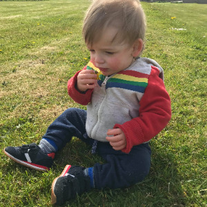 Babysitter required in Carlingford, County Louth, Ireland